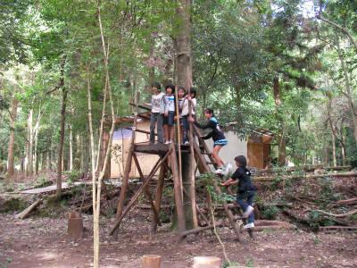 2010/10/23〜24丹波ごちゃまぜ自然体験〜秋〜2回目 5