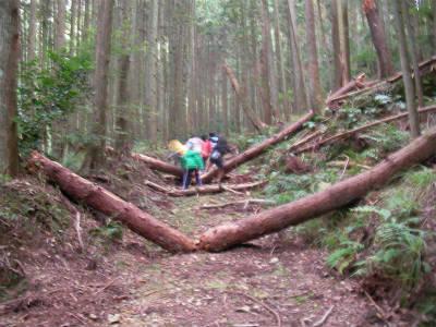 2010/10/23〜24丹波ごちゃまぜ自然体験〜秋〜2回目 87