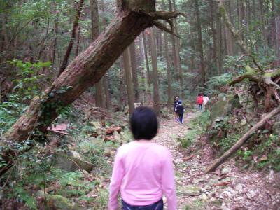 2010/10/23〜24丹波ごちゃまぜ自然体験〜秋〜2回目 103