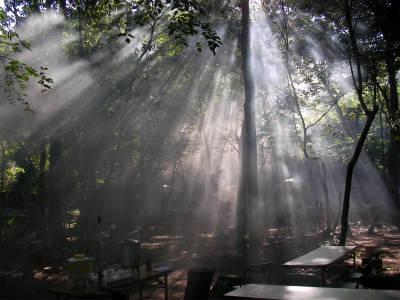 丹波ごちゃまぜ自然体験キャンプ 93